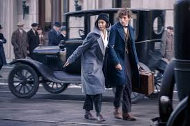 Image result for newt and tina