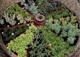 herb kitchen garden decoration dsc small vegetable garden ideas round vegetable beds patio decorating ide