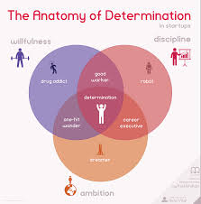 the anatomy of determination in startups infographic chart determination the best predictor of startup success visualized based on paul graham s essay as