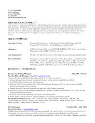 resume examples of skills summary   cover letter exampleresume examples of skills summary resume skills examples resumizer resume skills summary goal statement for graduate