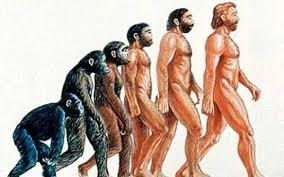 Αποτέλεσμα εικόνας για Η εξέλιξη του ανθρώπου