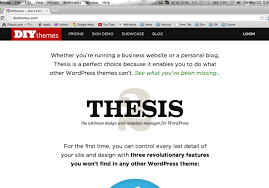 Thesis Theme Review  Run A Killer Website With The Thesis     Jerusalem Post