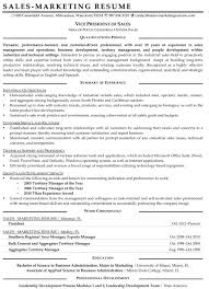Resume Samples for Sales and Marketing Jobs   Vice President Resume