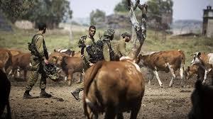 Resultado de imagen de militares israelís en Siria