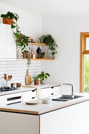 kitchen colors images: cantilever interiors kitchen bench tops open shelving