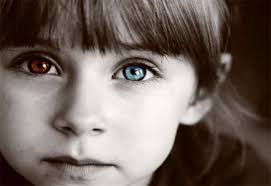 """... however, PBS's Frontline produced an amazing five part series you won't want to miss! Jane Elliott's – Blue Eyes/Brown Eyes Exercise – """"A CLASS DIVIDED"""" - brown-eyes_blue-eyes1"""