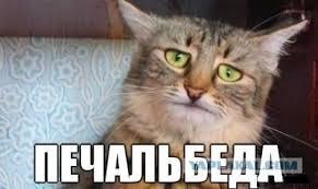 21 июня Порошенко посетит Францию - Цензор.НЕТ 9837