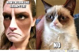 now i'm look like grumpy cat... - Meme Generator Captionator via Relatably.com
