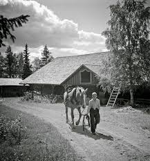 <b>Black</b> and <b>White</b> Photos of Daily Life in <b>Finland</b> in 1941 - <b>Finnish</b> ...