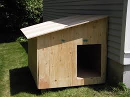 images about Tortoise on Pinterest   Tortoise House       images about Tortoise on Pinterest   Tortoise House  Tortoise and Dog Houses