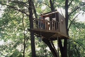 Cool Tree House Cake Designs In Tree House Designs And Plans Free    Cool Tree House Cake Designs In Tree House Designs And Plans Free