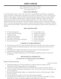 professional international it executive templates to showcase your resume templates international it executive