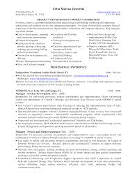 application development manager resume   sales   management   lewesmrsample resume  product development manager resume management