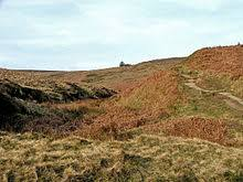 wuthering heights   wikipediathe climb to top withens  thought to have inspired the earnshaws     home in wuthering heights