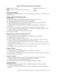 director of s job description medical device startup ceo job best photos of template of quarterly report to ceo ceo report ceo job description for resume