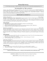 district manager resume samples cipanewsletter district manager resume sample retail manager resume sample