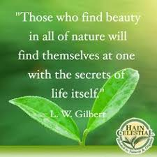 Nature Quotes on Pinterest | Environment Quotes, Environment and ...