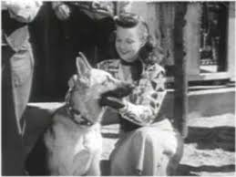 Image result for images of roy rogers show