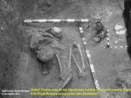 Resultado de imagen para romanian giants