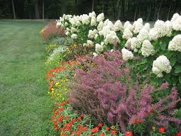 Small Picture Perennial Flower Garden Design perennial flower garden design