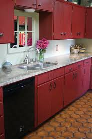paint colors dark cabinets dog breeds red painted  img jpg red painted