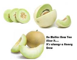 Image result for honeydew image