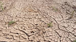 Resultado de imagen de futuro sin agua