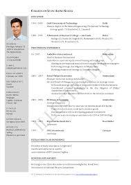 Resume Model  writer resume template open office writer resume     Clasifiedad  Com Clasified Essay Sample