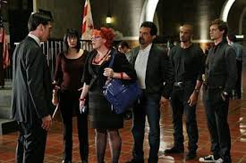 Image result for kirsten vangsness 2015