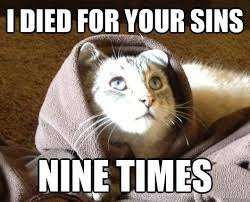 "Best of ""Jesus Kitty"" Meme (14 Pics) 