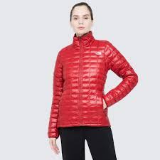 <b>Куртка</b> утепленная <b>женская</b> The <b>North</b> Face Eco красный цвет ...