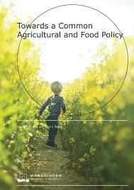 pp cambiamento climatico agricoltura by BARILLA G  e R  Fratelli          xavier application essay Case study google  s strategy in