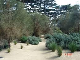 Small Picture 92 best Mediterranean garden images on Pinterest Mediterranean