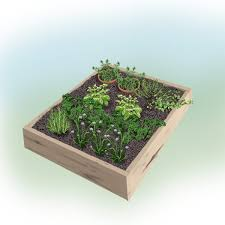 Small Picture Fresh and Handy 4 x 4 foot Herb Garden Bonnie Plants