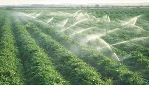 essay about water resources management   essaysustainable management of water resources in agriculture