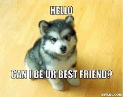 I must have a true best friend. 8D - Random - KH13.com Forum ... via Relatably.com