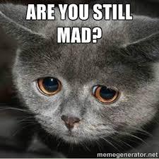 Are you still mad? - Sad Cute Cat | Meme Generator via Relatably.com