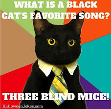 Image result for cat meme songs