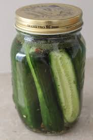 Image result for pickle in your life