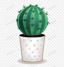 <b>Potted plant</b> of <b>watercolor cactus</b> png image_picture free download ...