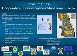 treasure coast cisma poster florida invasive species partnership poster click to view larger image