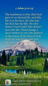 Image result for 1 john 5:11-13 bible gateway