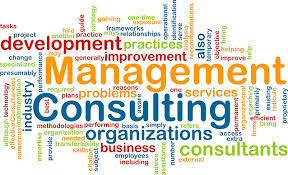 Image result for management consultancy