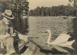 mastery and missteps in matisse s books pierre matisse photograph of his father henri matisse sketching a swan in the bois de