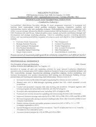 sales executive resume sample resume samples for sales
