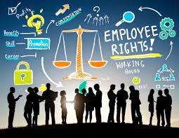 5 tips for finding the right employment law solicitor knowing your employment rights