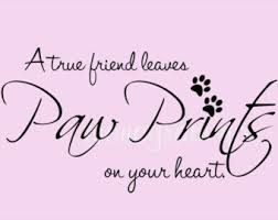 pet quotes – Etsy