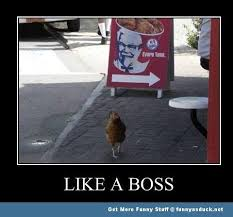 So courageous... | Memes | Pinterest | Like A Boss, Boss and Posts via Relatably.com