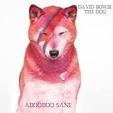 <b>David Bowie the</b> dog - Home | Facebook