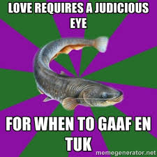love requires a judicious eye for when to gaaf en tuk ... via Relatably.com